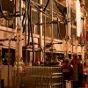 フッ素を高密度に含む親水性炭素ナノ粒子合成法の開発に成功